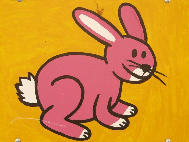 Hare har kanske lurat fartkamera