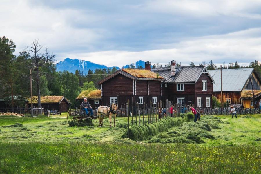 Norge får digital tjänst för lokala upplevelser