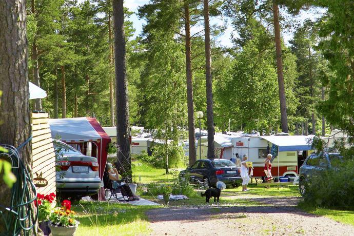 SCR visar på en ovanligt stor ökning av camping