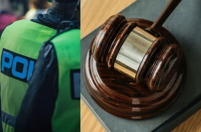 Kriminologer och bilister oense om straff