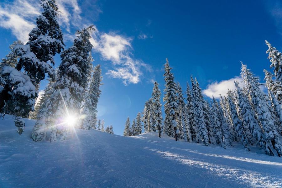 Tips till dig som vinterförvarar