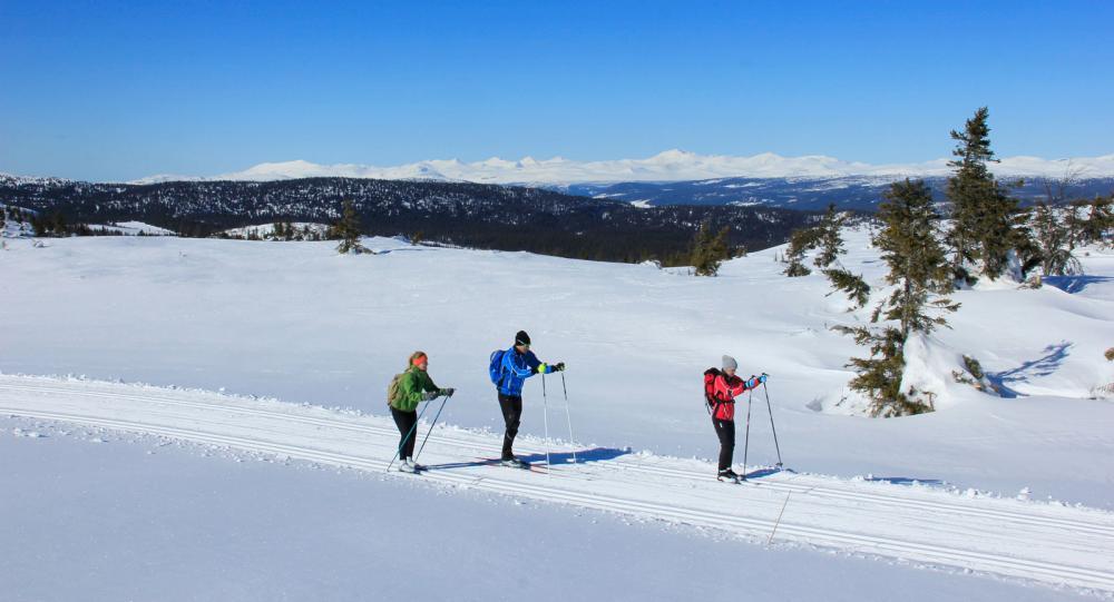 Lillehammer-regionen bjuder på  Norges bästa längdskidåkning i högfjällsmiljö.