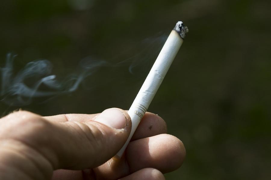 Hur gäller rökförbudet på campingen?