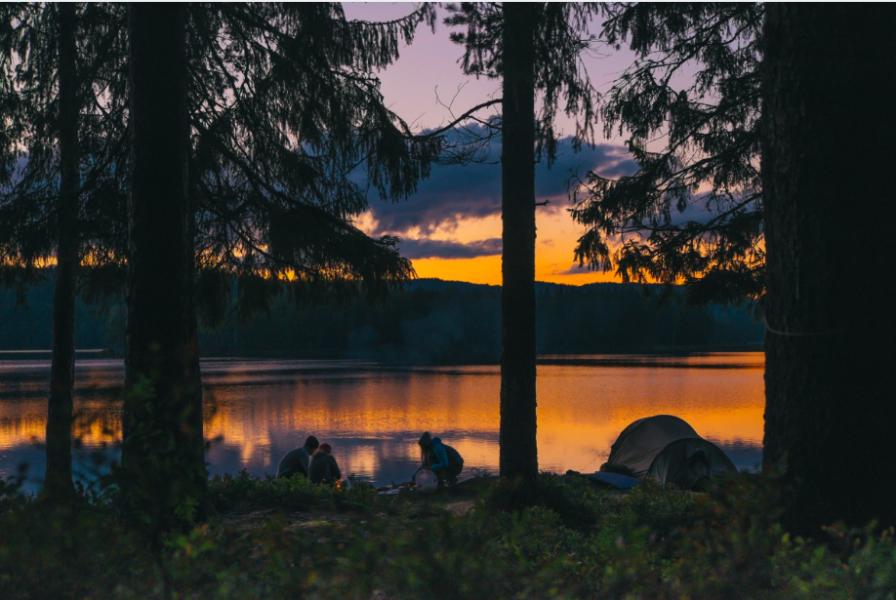 Fler än 16 miljoner gästnätter hos Svensk Camping