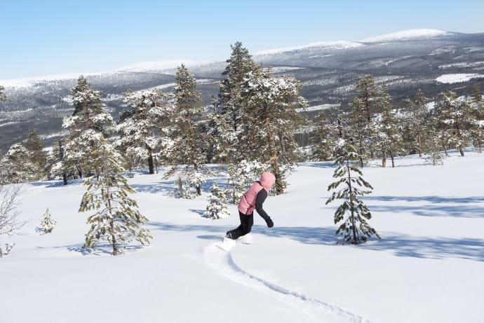 Stöten i Sälen har 21 liftar och 47 nedfarter. Mormors störtlopp är Dalarnas- och Sälens längsta nedfart med 3 060 meter.