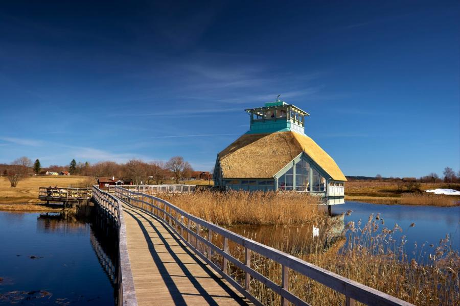Nästan alla besökare vid Hornborgasjön nöjda