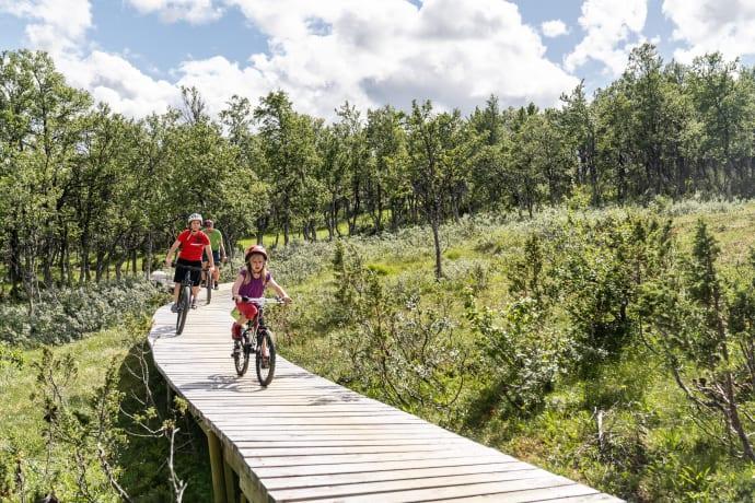 Sveriges största cykelarena får gemensamt liftkort