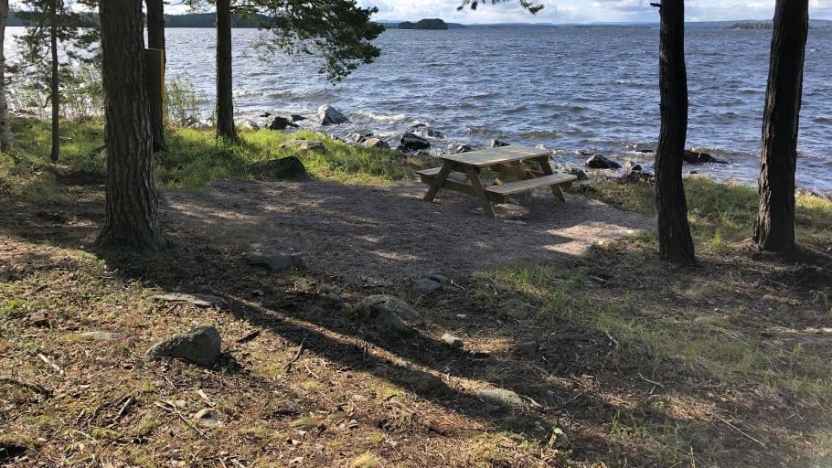 Många nya naturreservat i Dalarna