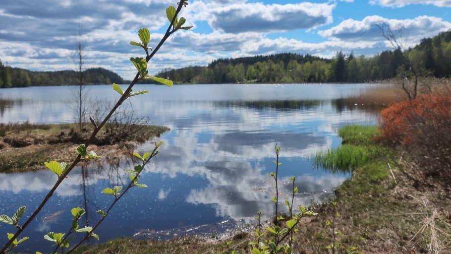 Visit Halland tipsar om 12 mindre besökta naturmål
