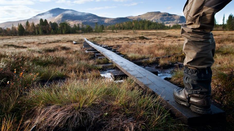 Digital storsatsning inom naturturism ska lyfta svenska destinationer