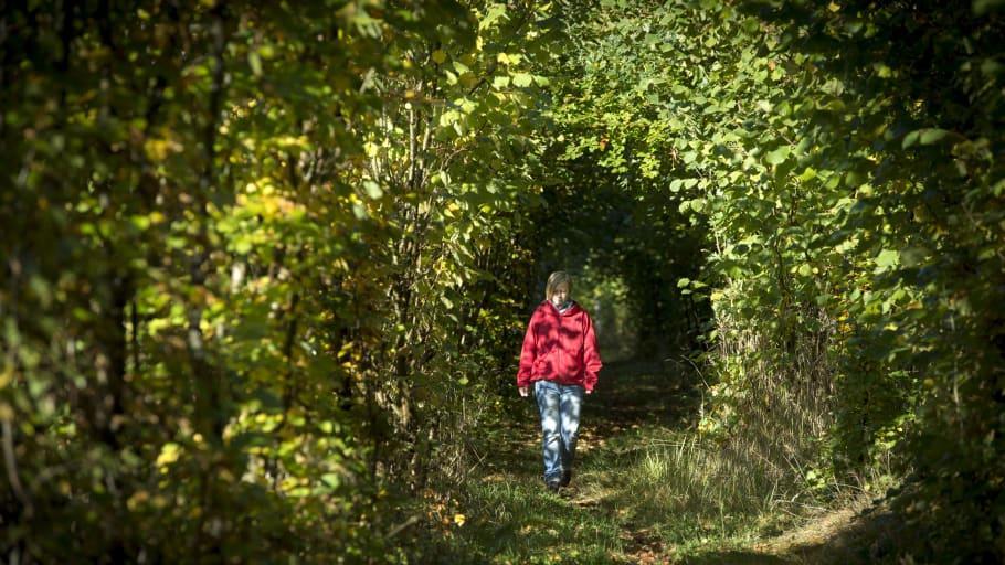 Besökskartan guidar till lugn natur utan trängsel