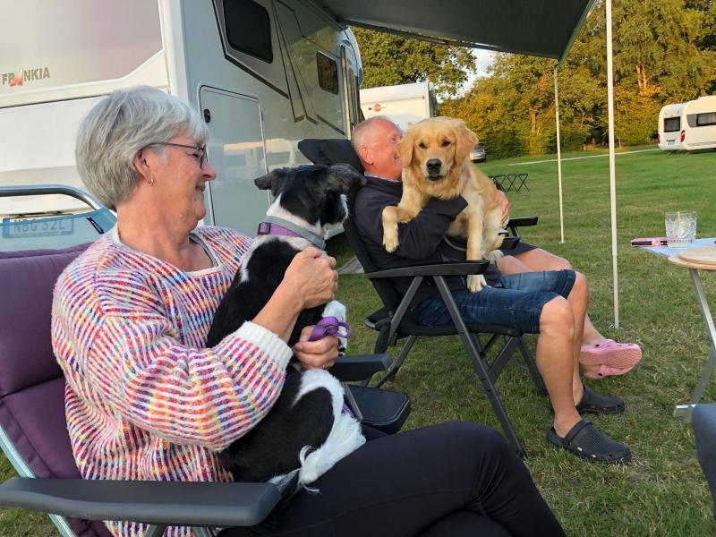 Tre hundar på fem bilar – tur att både Tyskland och Frankrike är hundvänliga länder.