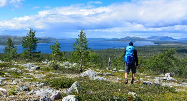 Härlig frihetskänsla. Enastående vy över sjön Rogen som sträcker sig ända in över norska gränsen.