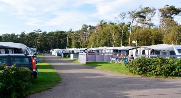 Platserna på First Camp Tylösand är mycket välskötta, liksom hela campingen.