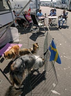 Bildspel: Husbilsmässan i Göteborg