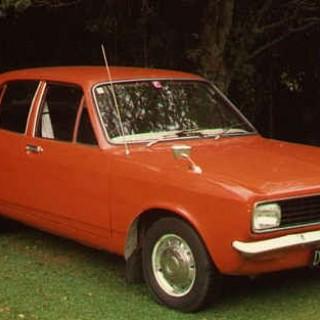 I svampskogen 1971