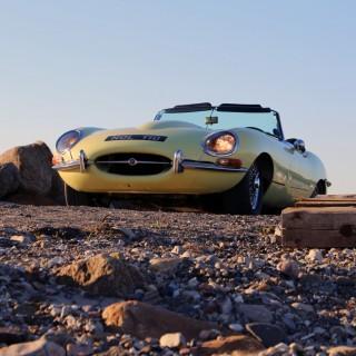 Jaguarer med italienskt snitt