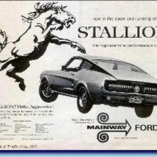 Nygrillad Mustang