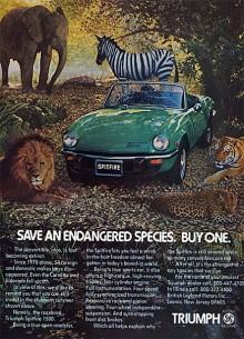 """1977 var Spitfire en av väldigt få öppna bilar på den amerikanska marknaden, något Triumph drog nytta av på ett uppseendeväckande sätt i annonseringen. """"Rädda en utrotningshotad art. Köp en."""""""