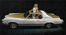 Hurst hette en tillverkare av trendiga växelspakar för bilindustrin. Ibland fick de ha sitt namn på speciella och begränsade bilmodeller. I sin egen färgsättning vitt och guld, här på 1973-års Grand Prix SSJ Hurst.