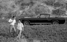 En Ford Mustang Shelby GT350H 1965 kan vara ett tullbefriat samlarfordon, men bara om det finns mindre än 30 exemplar av just den motorvarianten och årsmodellen.