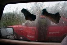 -Du är det ok om jag slänger mina strumpor på ditt fönster?