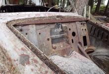 motorrummet gapar tomt, förutom barr och kvistar.