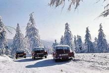 Vintertatror 1960