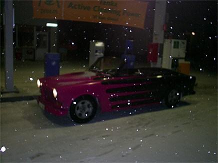 Min Amazon på macken i Grindnäset utanför Sidensjö, 30/1 -07. Björn Nyman