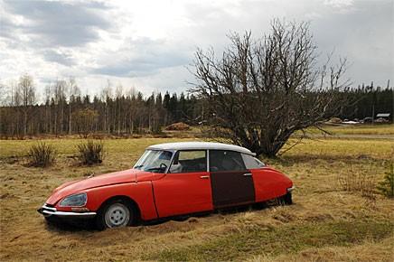 Hemma hos Lennart Larsson i Kypasjärvi finns uppemot 50 Citroën CX och DS i varierande grader av förfall.