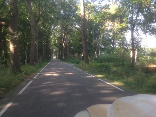 Trevliga småvägar i Holland