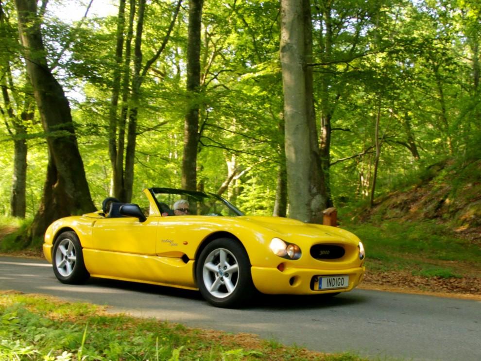 Indigoklubben brukar kunan samla ihop ett bra gäng, med tank på hur få bilar som byggdes är sex bilar på plats en försvarlig del av alla tillverkade.