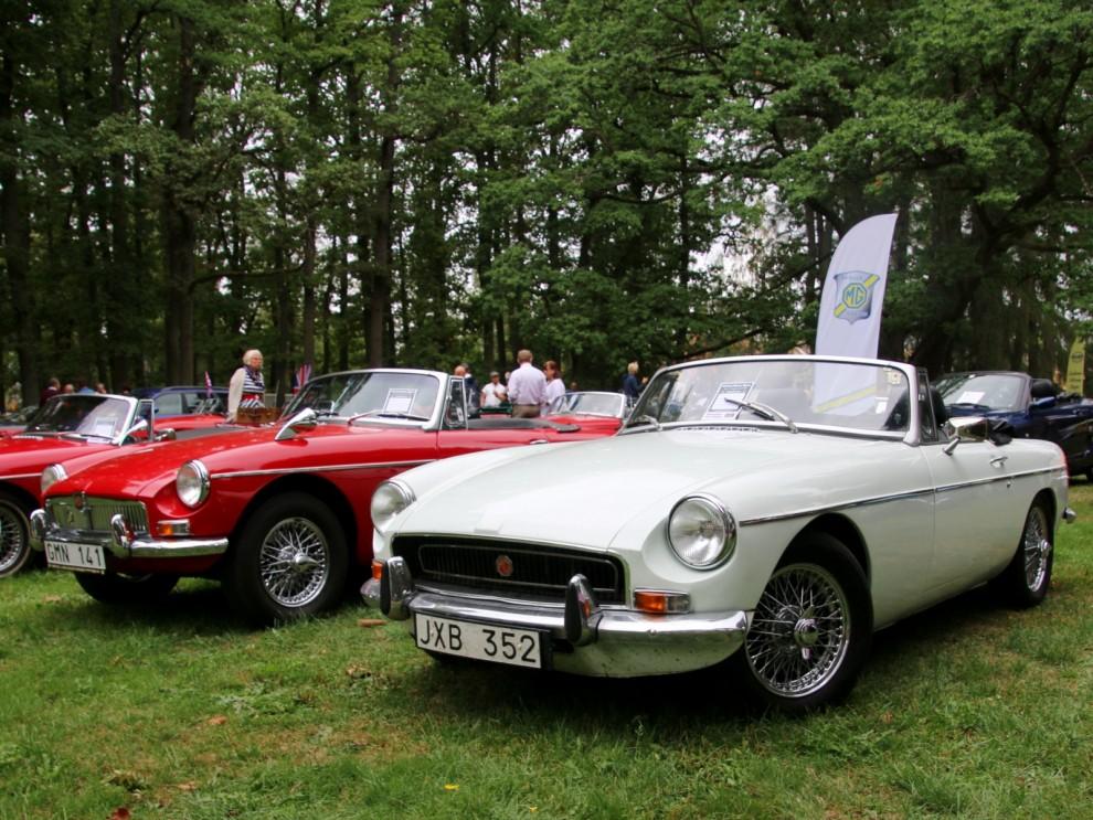 Mg i långa rader, MGB är nog mest populära sportbilen.
