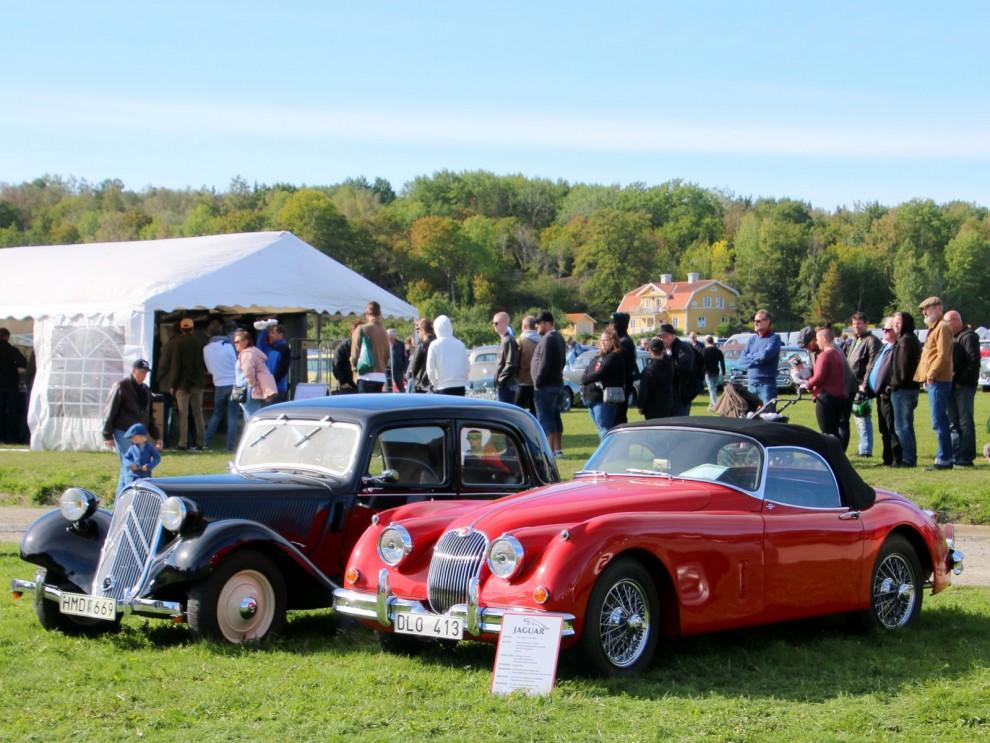 Jaguar och Citroën, samtida och så olika.