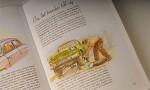 Bildspel: Instruktionsbok med glöd