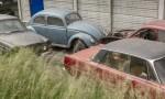 Bilsamling i Skåne