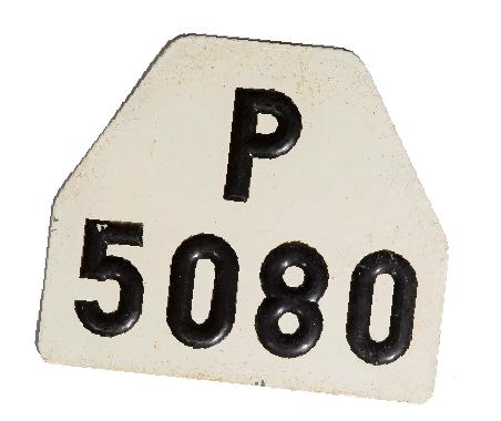Sök på 75 000 fordon i P-län 1962!