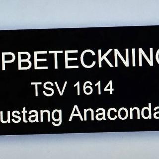 Mustang Anaconda -74