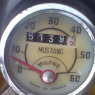Mustang Mamba GL -81