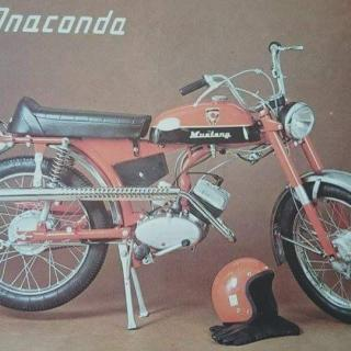 Mustang Anaconda -75