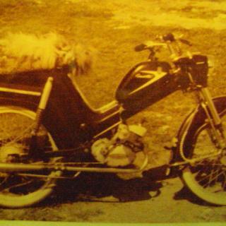 Husqvarna Cornette 1959 ram 4819