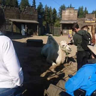 Mope meet westernfarm