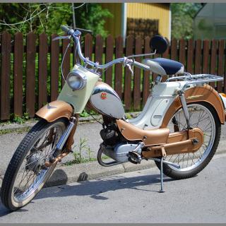 DBS Saxonett 3033