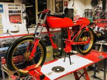Red Spinner – del 20