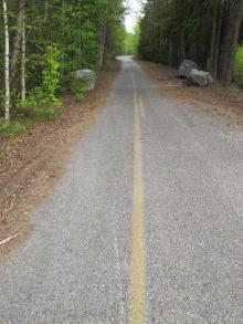 Den gula linjen i Bureå.