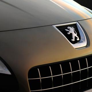 Bilfrågan: Saltets fel att bilar rostar