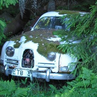 Bilfrågan: Aldrig oljebyte i Mercedes?