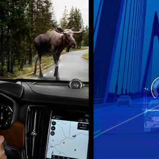 Animal Detection och Pilot Assist ska locka bilköpare i premiumsegmentet.
