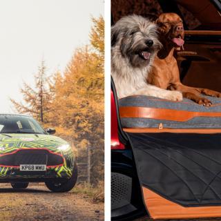Miljardär räddar Aston Martin – Volvoägaren snuvas