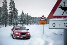 I Saab 9-5 behöver man inte rädas älgar eller renar. Saab krockprovar sina bilar mot en konstjord älg.